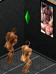 sim1.jpg